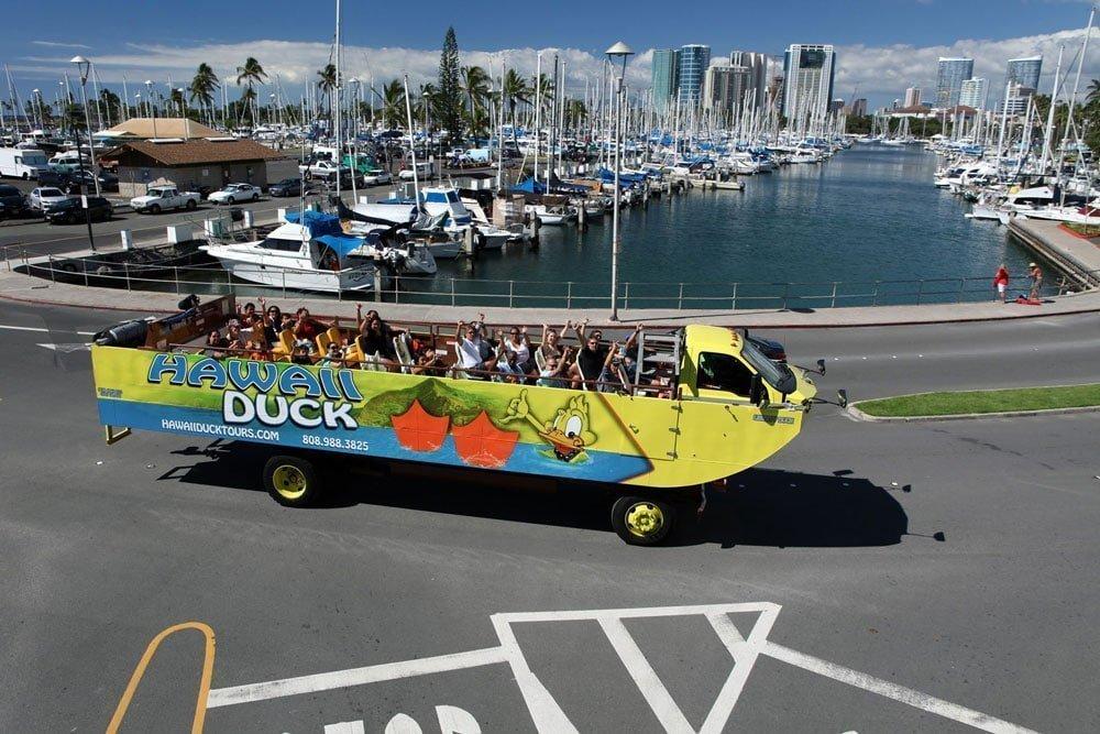 Hawaii-Duck
