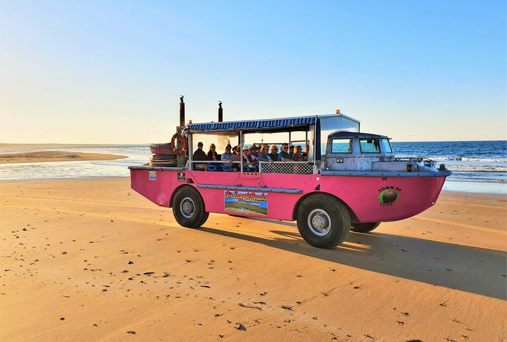 Duck Bus Tours Downunder